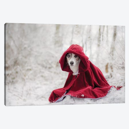 Little Red Riding Hood In Winter Canvas Print #OXM3546} by Heike Willers Canvas Print
