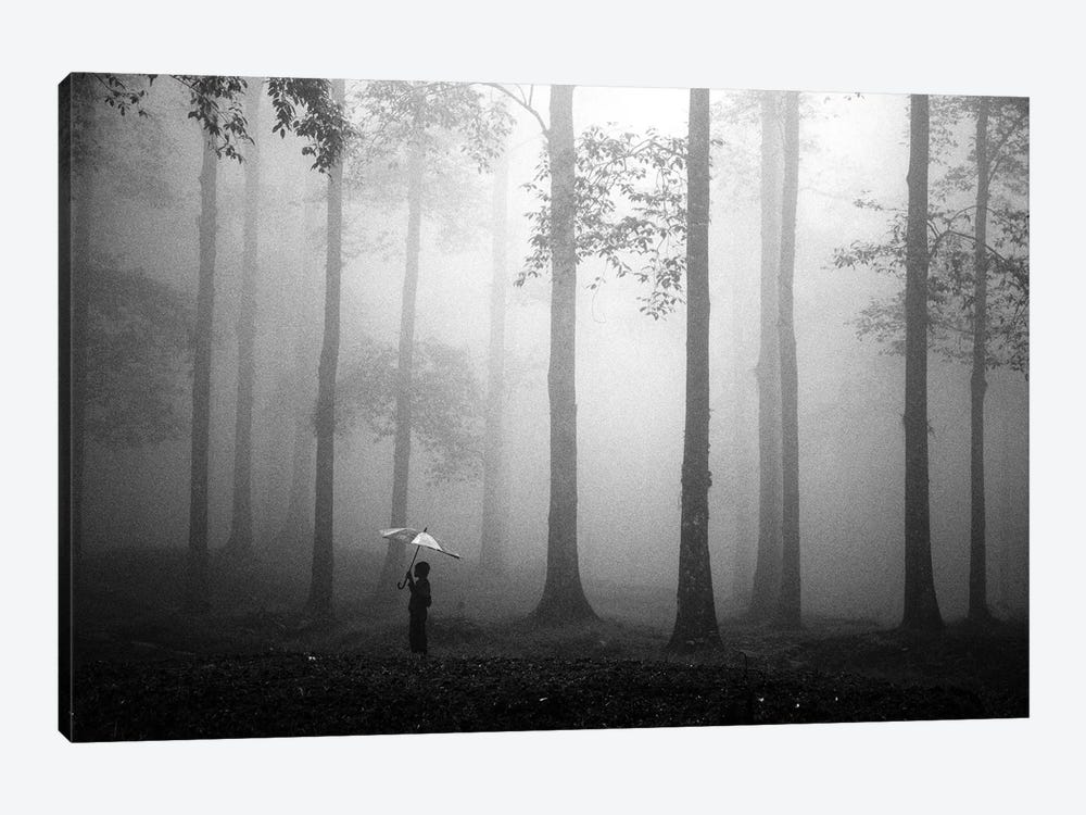 After The Rain by Hengki Lee 1-piece Canvas Art