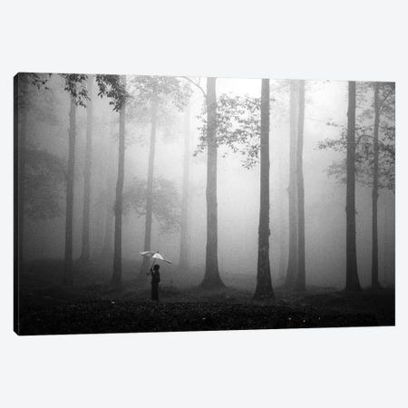 After The Rain Canvas Print #OXM3550} by Hengki Lee Canvas Print
