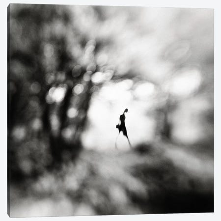 Equinox Canvas Print #OXM3552} by Hengki Lee Canvas Print