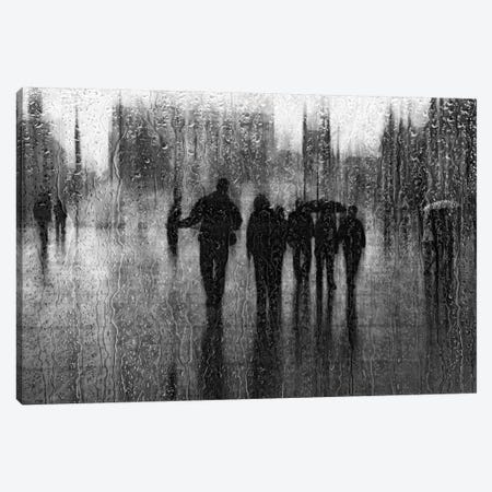 After The Rain Canvas Print #OXM355} by Roswitha Schleicher-Schwarz Canvas Art Print
