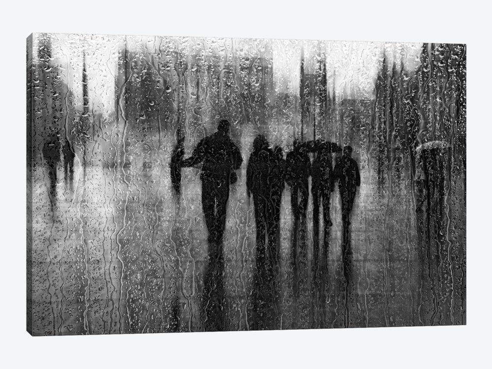 After The Rain by Roswitha Schleicher-Schwarz 1-piece Art Print