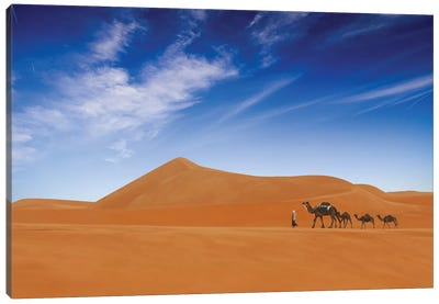 Desert Life .. Canvas Art Print