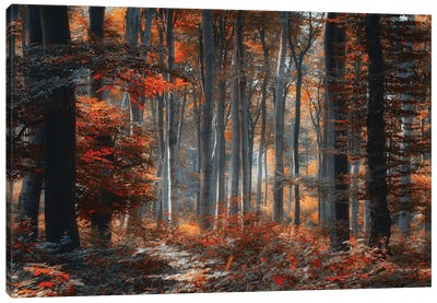 Painting Forest Canvas Art Print
