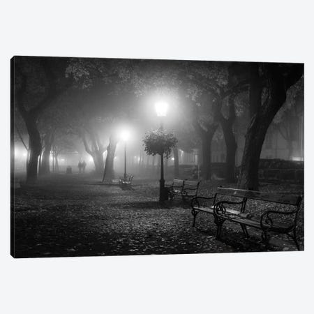 Foggy Day Canvas Print #OXM3580} by Ilias Nikoloulis Canvas Wall Art