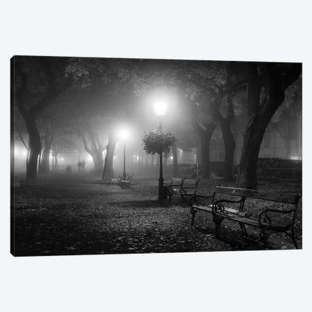 Foggy Day Canvas Print #OXM3580} by Ilias Nikoloulis Canvas Wall Art