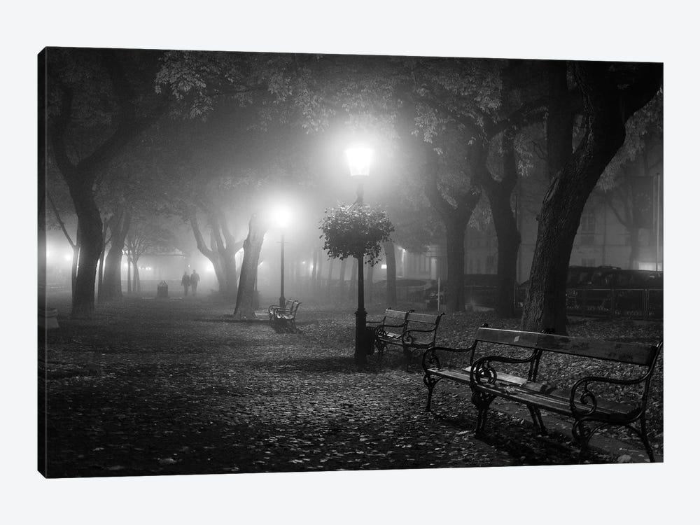 Foggy Day by Ilias Nikoloulis 1-piece Canvas Art Print