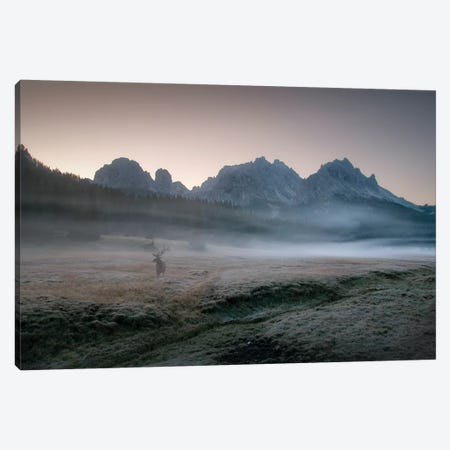 Misty Morning Canvas Print #OXM3582} by Inigo Cia Canvas Artwork