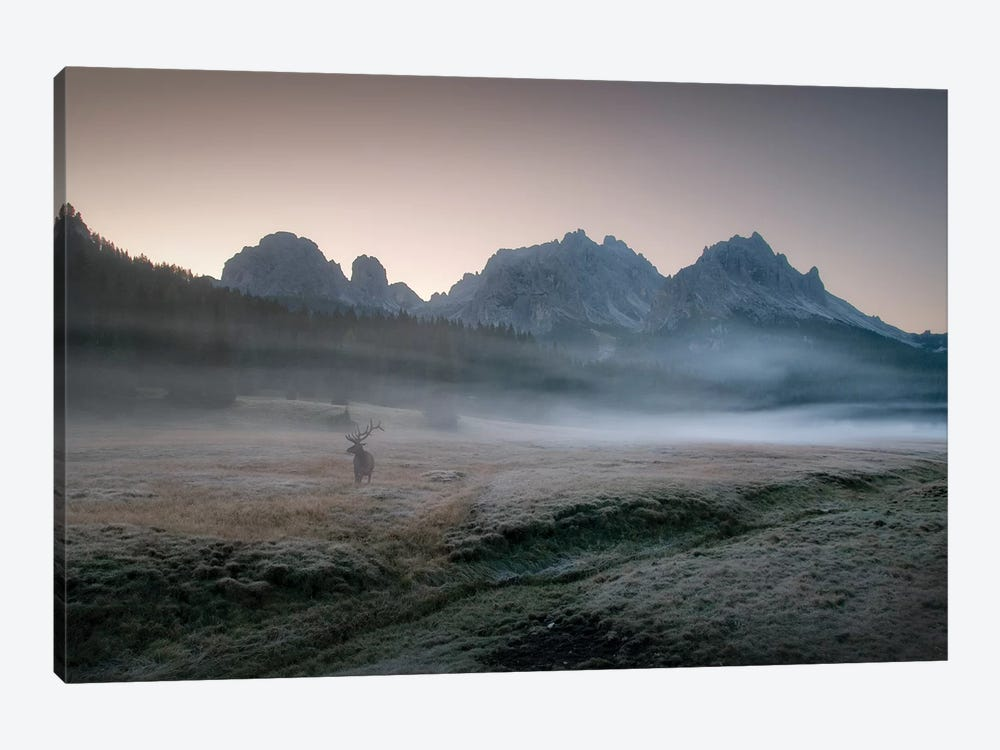 Misty Morning by Inigo Cia 1-piece Canvas Art Print