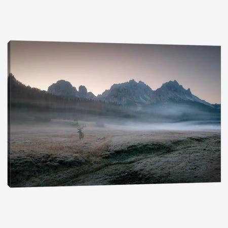 Misty Morning Canvas Print #OXM3582} by Inigo Cia Canvas Artwork