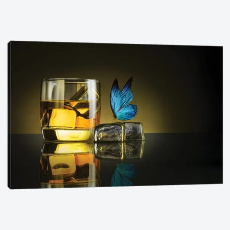Butterfly Drink Canvas Print #OXM3595} by Jackson Carvalho Canvas Art