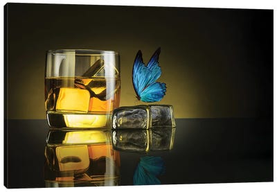 Butterfly Drink Canvas Art Print