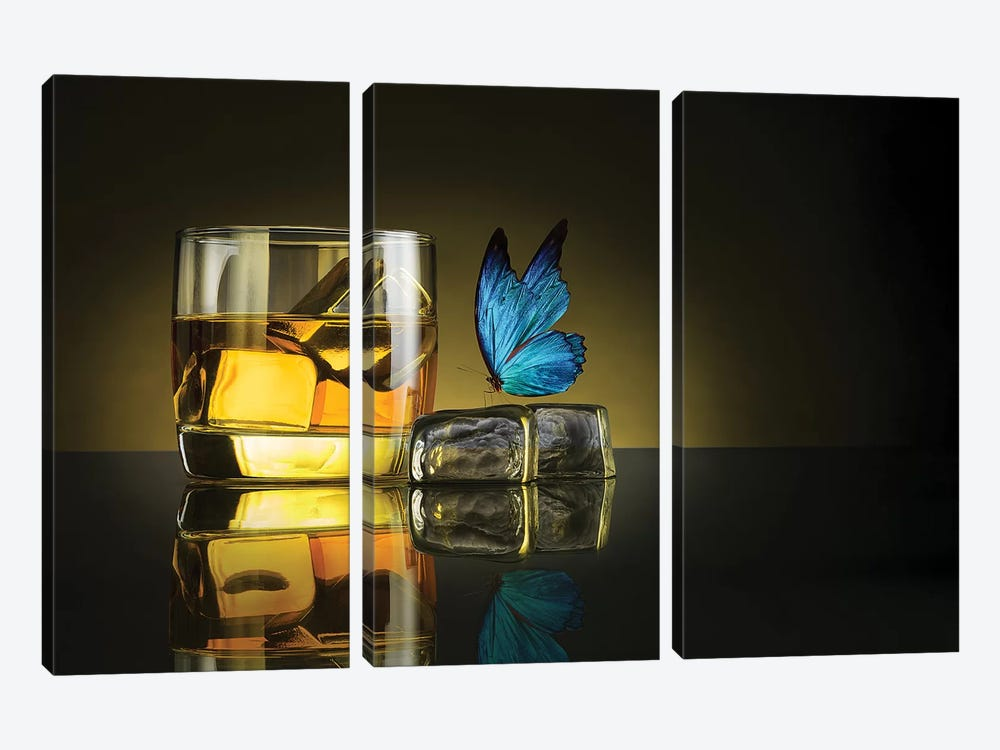 Butterfly Drink by Jackson Carvalho 3-piece Art Print