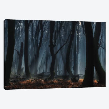 Dancing Trees Canvas Print #OXM3609} by Jan Paul Kraaij Canvas Print