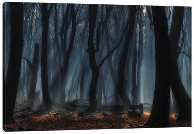 Dancing Trees Canvas Art Print