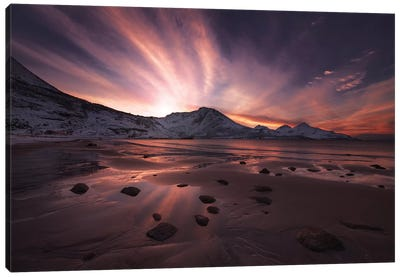 Northern Paradise Canvas Art Print
