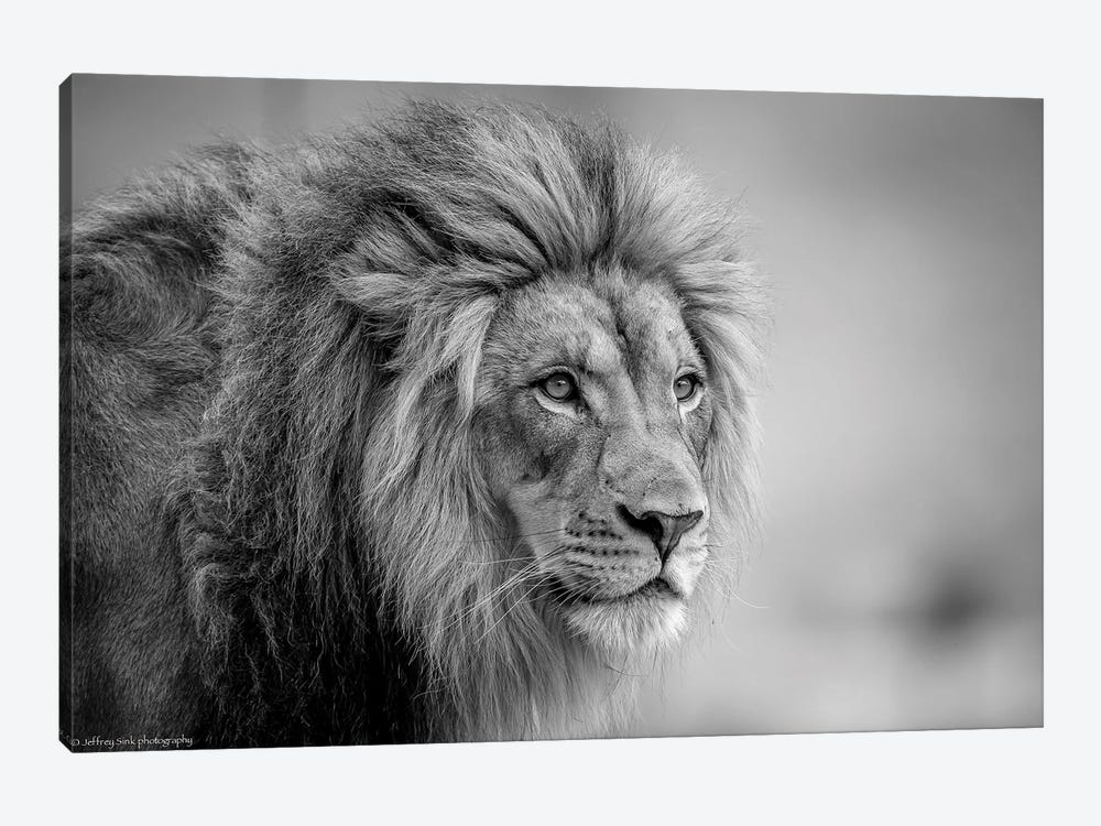 His Majesty.... by Jeffrey C. Sink 1-piece Canvas Artwork
