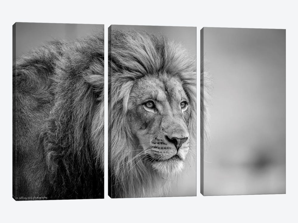 His Majesty.... 3-piece Canvas Art