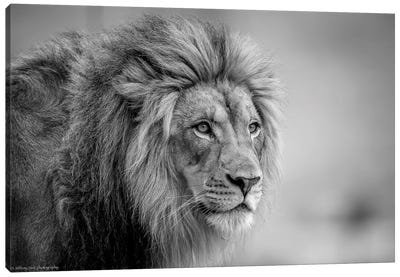 His Majesty.... Canvas Art Print