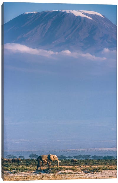 Kilimanjaro And The Quiet Sentinels Canvas Art Print