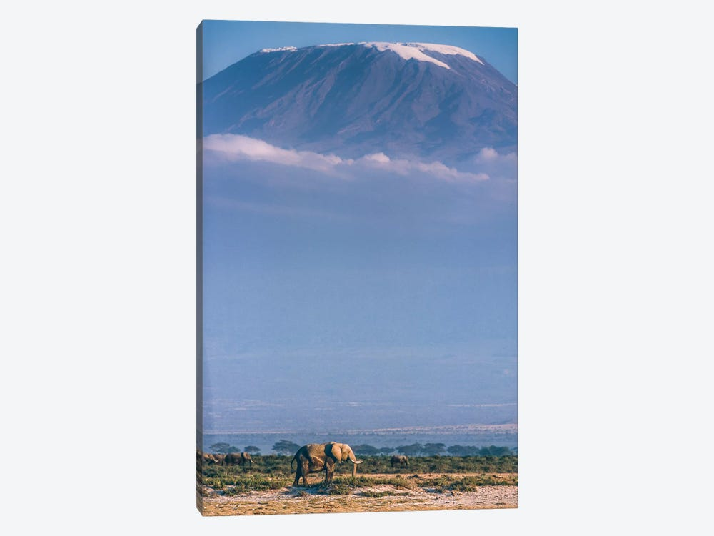 Kilimanjaro And The Quiet Sentinels by Jeffrey C. Sink 1-piece Art Print