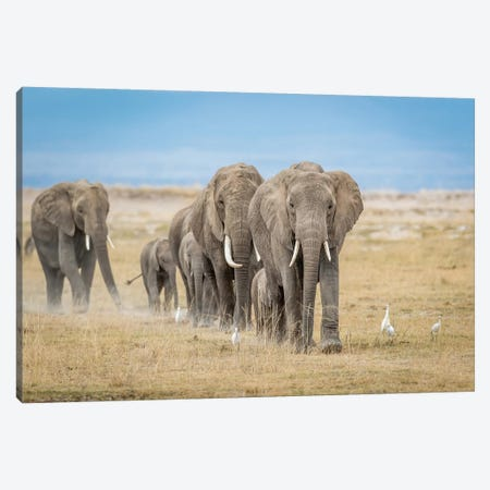 The World's Greatest Parade Canvas Print #OXM3632} by Jeffrey C. Sink Canvas Art