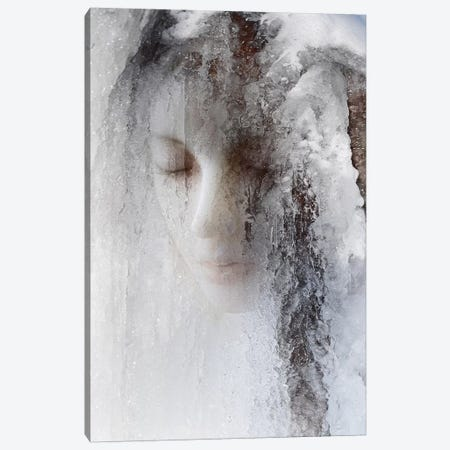 Ice Queen Canvas Print #OXM3634} by Jeffrey Hummel Art Print
