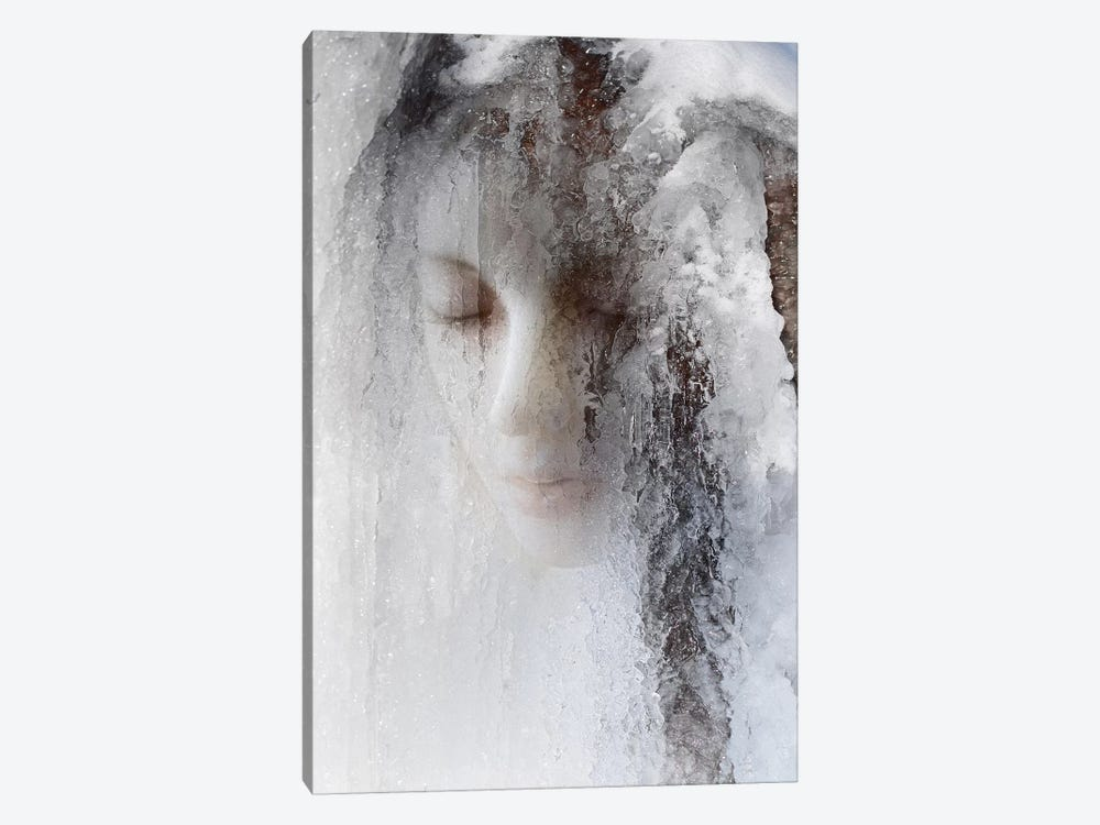 Ice Queen by Jeffrey Hummel 1-piece Canvas Wall Art