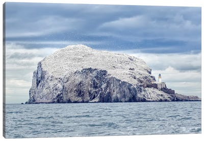 Bass Rock Canvas Art Print