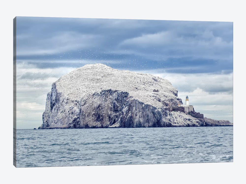 Bass Rock by Joan Gil Raga 1-piece Canvas Print