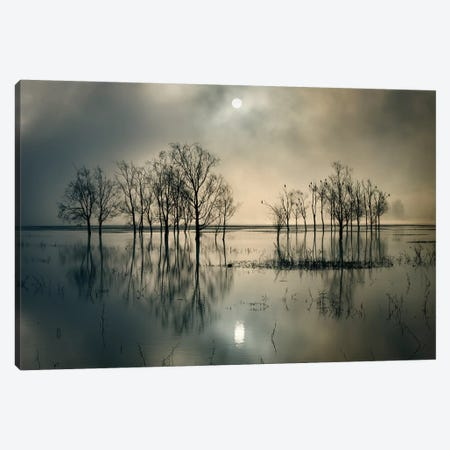 Lake's Secret Canvas Print #OXM3649} by Joanne_Flj Canvas Art Print