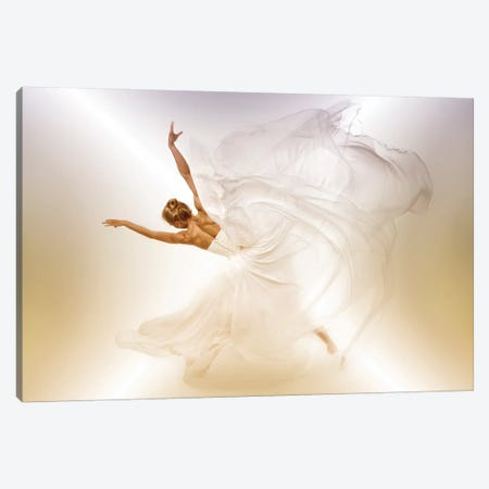 Butterfly 3-Piece Canvas #OXM3651} by John Andre Aasen Canvas Art