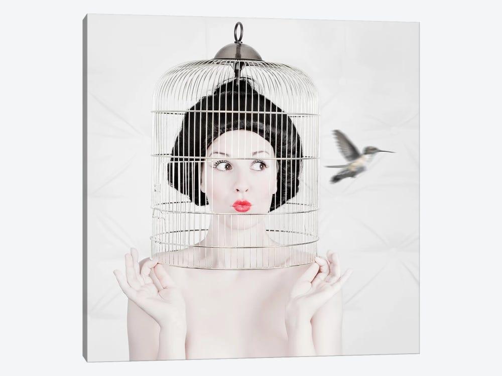 Escape by John Andre Aasen 1-piece Canvas Art