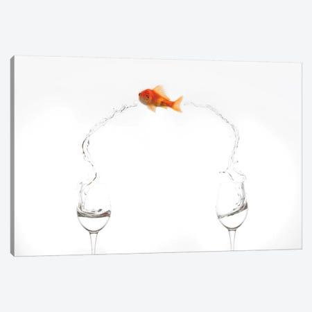 Jump! 3-Piece Canvas #OXM3661} by Jose Beut Art Print