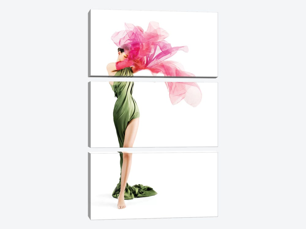 Flower by Jose Luis Villar 3-piece Canvas Art Print