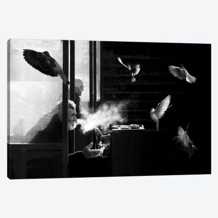 The Man Of Pigeons Canvas Print #OXM3667} by Juan Luis Duran Canvas Art