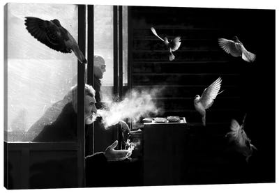 The Man Of Pigeons Canvas Art Print