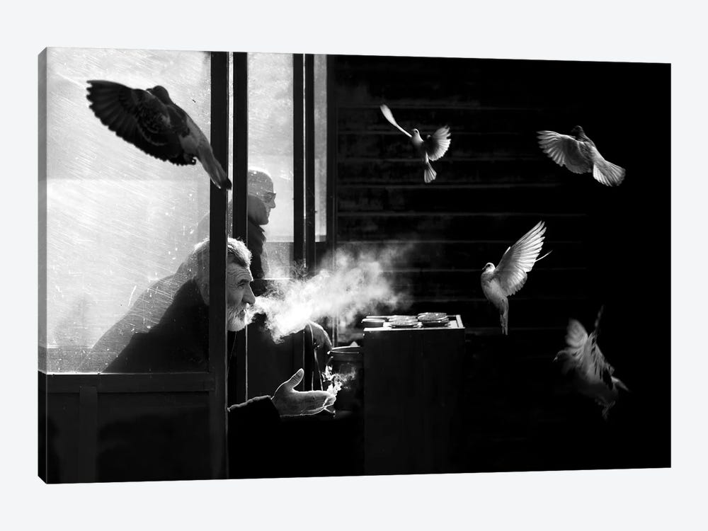 The Man Of Pigeons by Juan Luis Duran 1-piece Canvas Wall Art