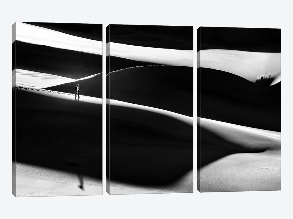 In The Shadowland by Izidor Gasperlin 3-piece Canvas Print
