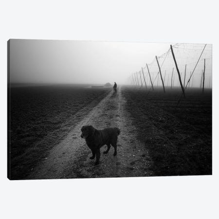 Waiting For A Friend Canvas Print #OXM3672} by Jure Kravanja Canvas Wall Art