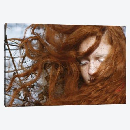 Red Canvas Print #OXM3689} by Katarina Djelbabin Canvas Art Print