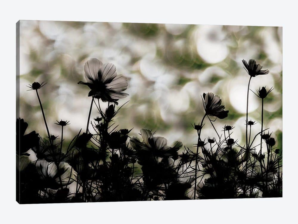 Autumn Chorus by Keisuke Ikeda 1-piece Canvas Art Print