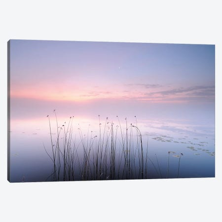 Lake Canvas Print #OXM3695} by keller Canvas Art Print