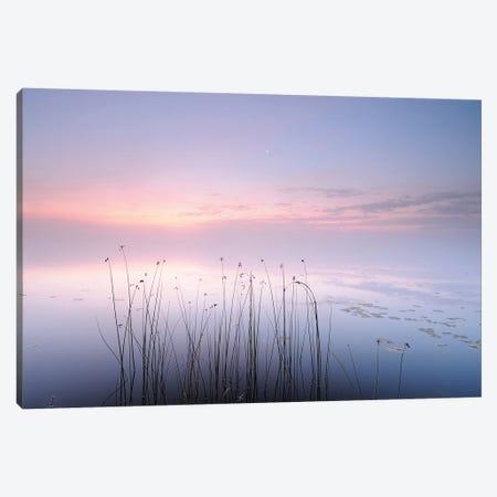Lake Canvas Print #OXM3695} by keller Canvas Art Print