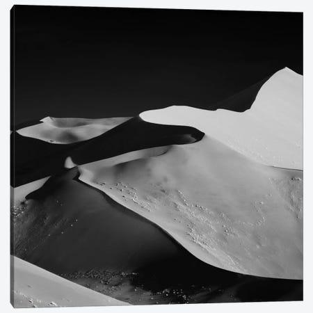 Abstract Dunes Canvas Print #OXM369} by Mathilde Guillemot Canvas Art Print
