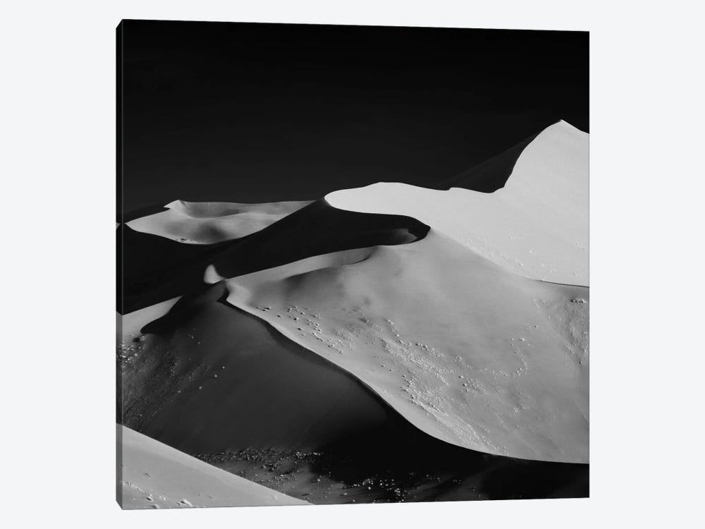 Abstract Dunes by Mathilde Guillemot 1-piece Canvas Artwork