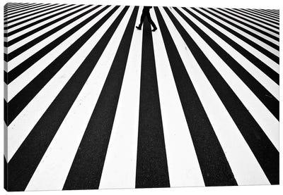 Stripe Canvas Art Print