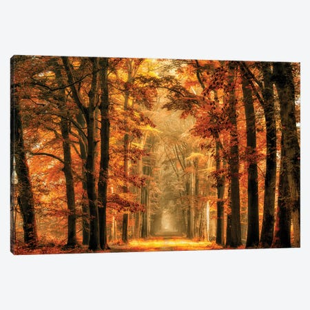 Exit The Portal Canvas Print #OXM3721} by Lars van de Goor Canvas Wall Art