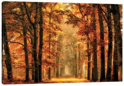 Exit The Portal Canvas Art Print