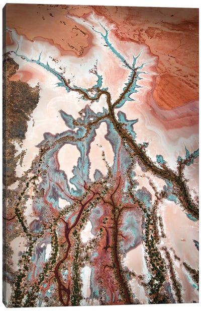 Kimberley Creative Canvas Art Print